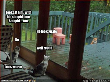 The Office Lolcat