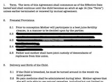 Schrute Martin Child Contract