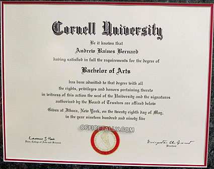 The Office: Andy Bernard's Cornell diploma