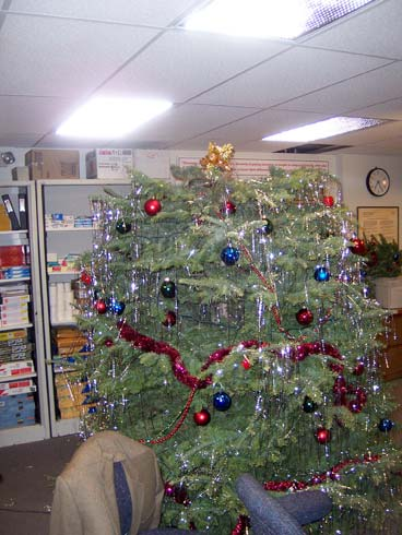The-Office-Christmas-Photos-10