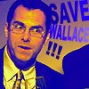 Save Wallace by Amy