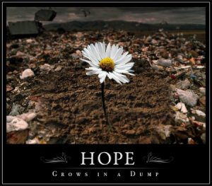 Hope grows in a dump