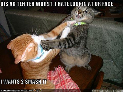 Counseling Lolcat by Awesome Blossom