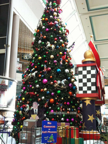 The Office Steamtown Mall