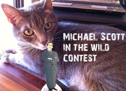 Michael Scott in the Wild Contest
