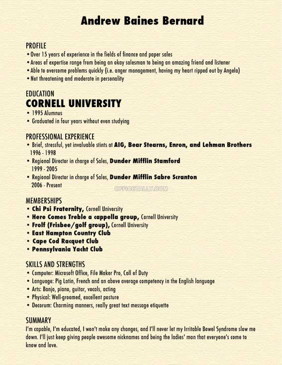 Andy Bernard resume