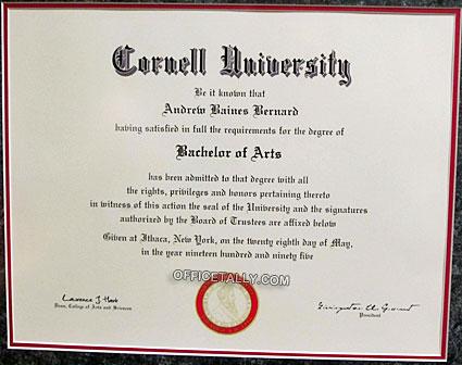 The Office: Andy Bernard's Cornell diploma